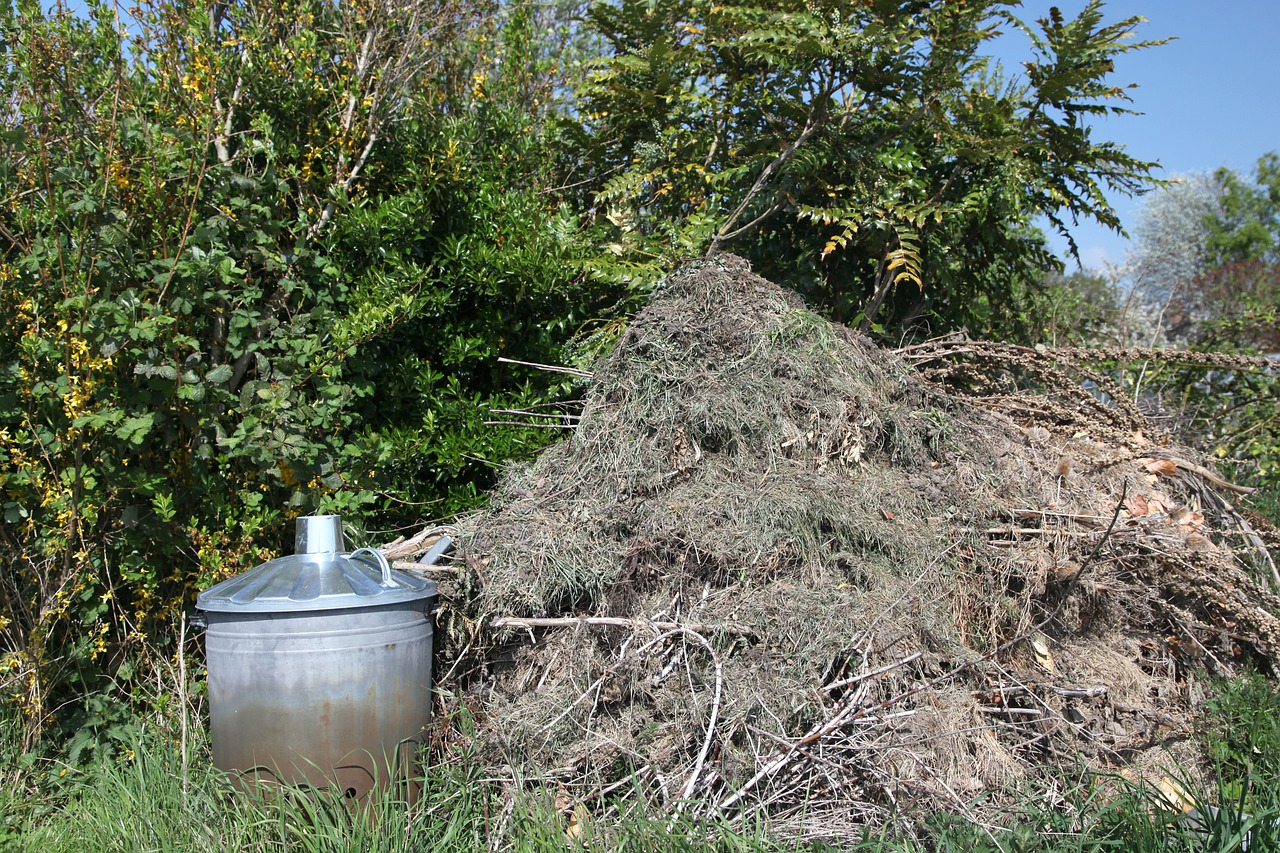 Reasons To Compost